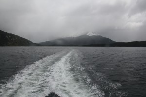 Leaving the park behind as we pushed into the Beagle Channel.